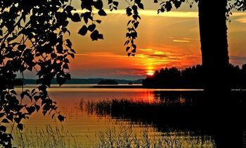 фото с сайта http://img0.liveinternet.ru