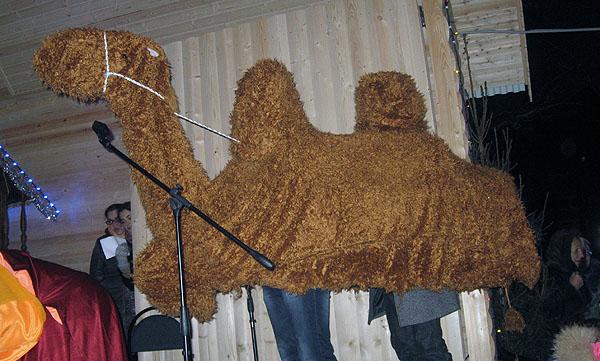 Как сделать верблюда своими руками 78