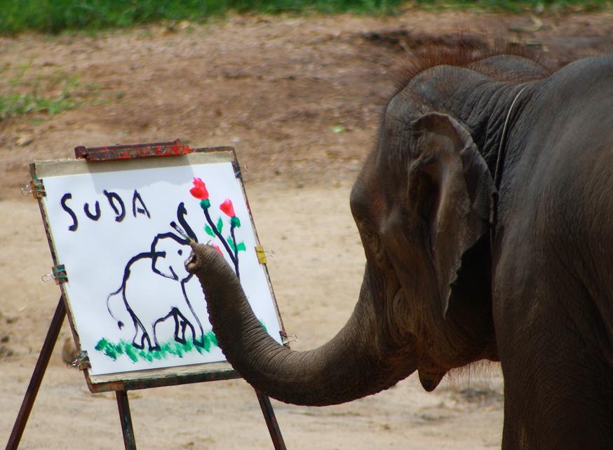 Слоны рисующие картины