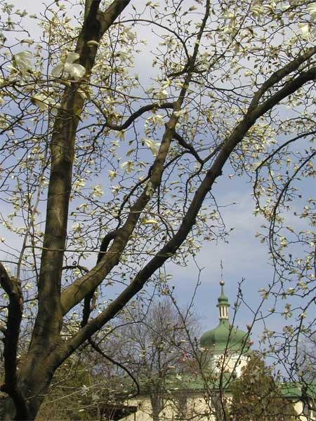 http://www.iona.kiev.ua/photo.php?menu=views&photo=021.jpg